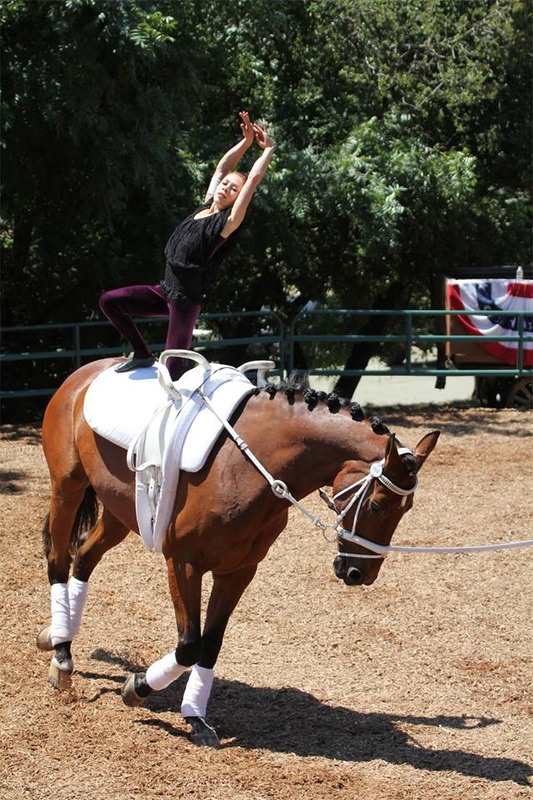 About Emily Emily Hogye Equestrian Vaulter